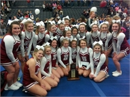 Henry County High School Cheerleaders are 8th region champs!